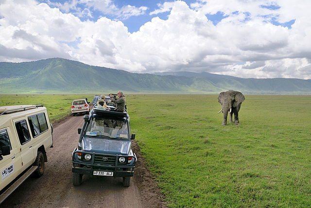 elephant and tourists at ngorongoro crater