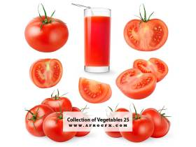 Collection of Vegetables 25