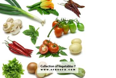 Collection of Vegetables 7