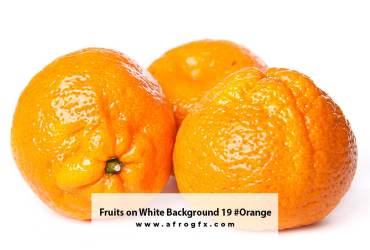 Fruits on White Background 19 #Orange