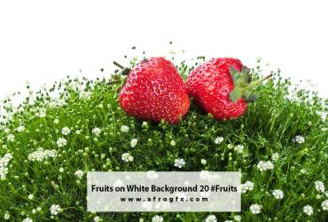 Fruits on White Background 20 #Fruits