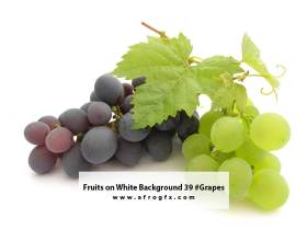 Fruits on White Background 39 #Grapes