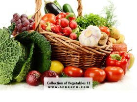 Collection of Vegetables 13