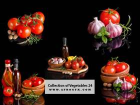 Collection of Vegetables 24
