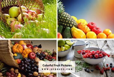 Colorful Fruit Pictures · Free Stock Photos