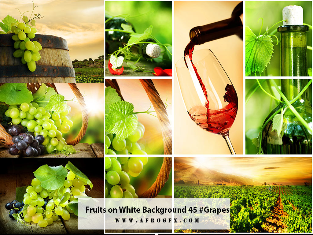Fruits on White Background 45 #Grapes