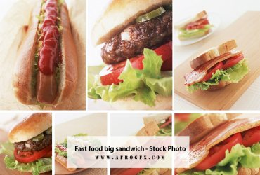 Fast food big sandwich - Stock Photo