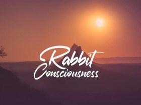 Consciousness Rabbit - No Copyright Audio Library