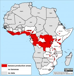 Resultado de imagen para banana africa