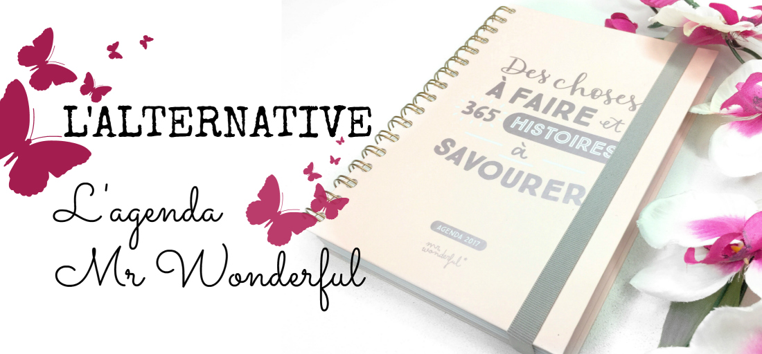 Lifestyle-mieux-organiser-mon-quotidien-bullet-journal-2017-planner-organisation-diy-agenda-afrolifedechacha-mr-wonderful