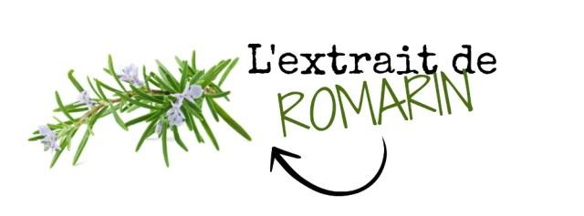 extrait-romarin-ingrédients-pousse-croissance-cheveux-crepus-afro-afrolifedechacha