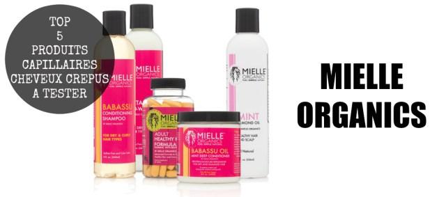 top-5-produits-capillaires-cheveux-afros-crepus-kinky-natural-hair-a-tester-absolument-incontournable-routine-capillaire-naturalista-aventure-decouverte-mielle-organics-afrolifedechacha