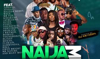 DJ KB1000% Naija Diaspora Mix