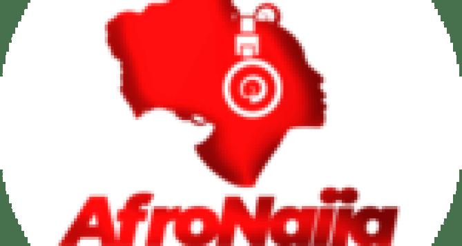 BBNaija 2020: Kiddwaya seen 'performing wonders' with erica's breast, Laycon reacts [VIDEO]