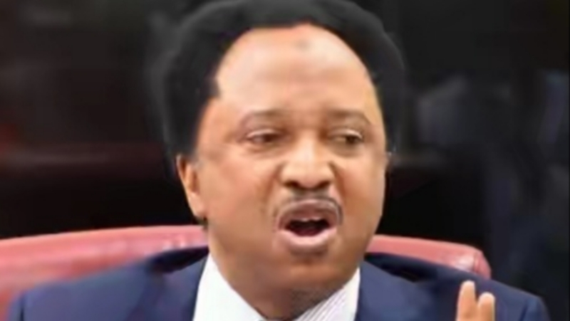 2023: Power can only shift if APC, PDP pick their presidential candidates from South, says Shehu Sani