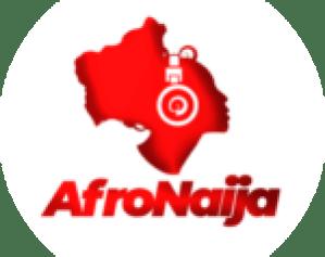 Top 5 longest bridges in Africa