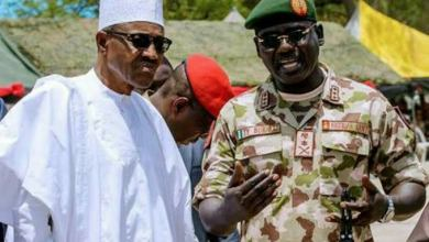 Buhari, military efforts in North-east underreported – Don