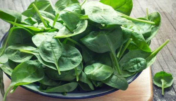 5 impressive benefits of Spinach you never knew