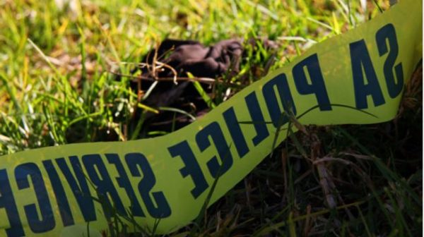 Ipid initiates investigation after KZN man dies in custody