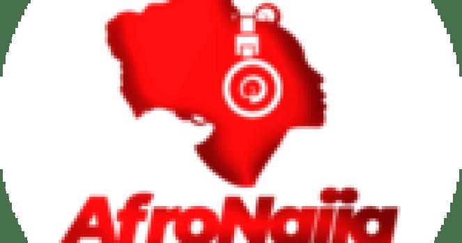 Buhari reappoints Faisal Shuaib as NPHCDA executive director