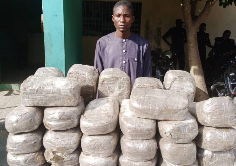 Police arrest son, mother with 49 parcels of Indian hemp in Kano