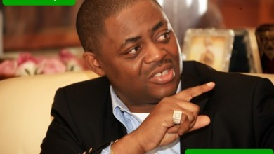 Femi Fani-Kayode Biography & Net Worth
