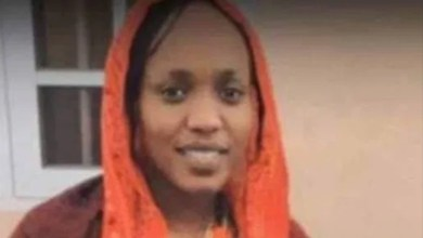 Gunmen free bride kidnapped with other passengers along Maiduguri-Damaturu road