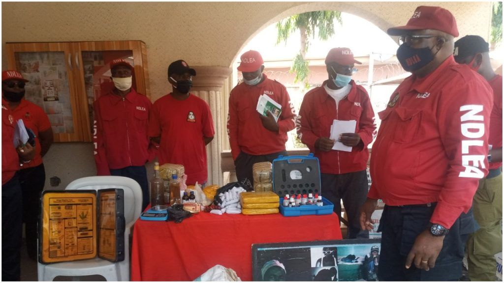 NDLEA recovers illicit drugs worth over N3billion in Kogi