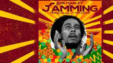 Bob Marley Ft. Tiwa Savage & Tropkillaz - Jamming (Remix)