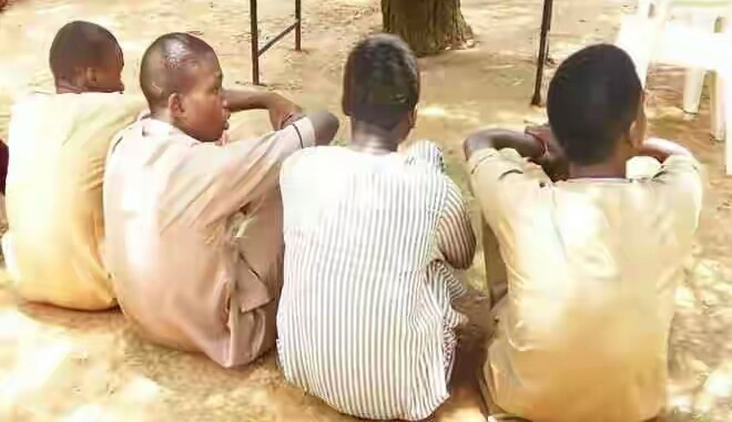 Police arrest 5 suspected rapists including 70-year-old who raped neighbour's 11-year-old daughter in Katsina