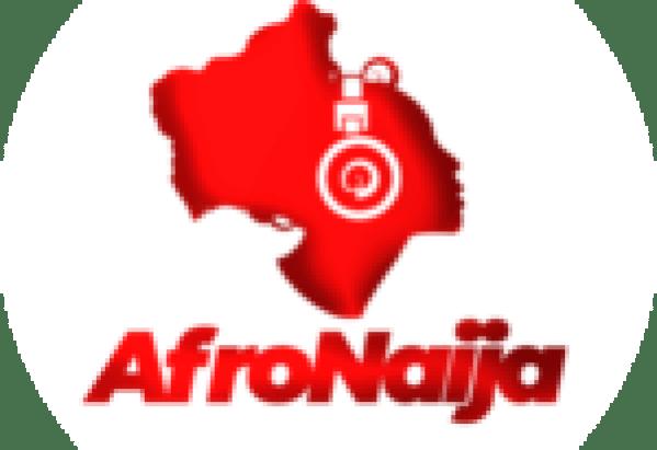 Letoya Makhene is back!