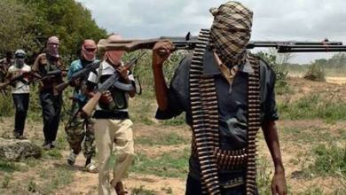 Gunmen abduct Chinese expatriate in Ekiti