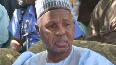 Stop demanding amnesty for bandits, Masari tackles Gumi