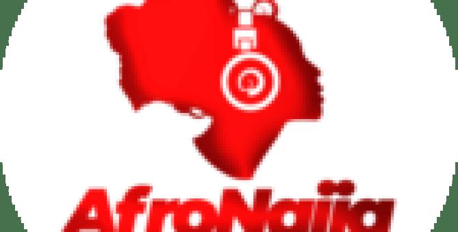 Reps to probe N500m Chibok school rehabilitation fund