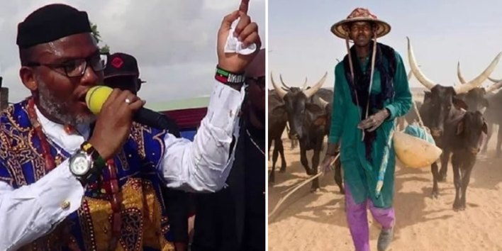 IPOB replies Miyetti Allah over threat to avenge death of herdsmen, says it is now blood for blood