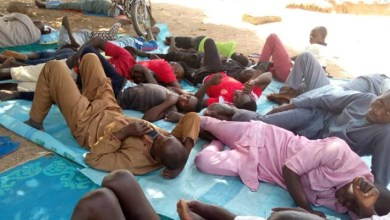 Bandits' Attack: 'We're sleeping under trees' – Niger residents cry out