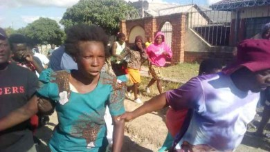 Zimbabwean woman nabbed after allegedly stealing a child