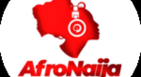 4 true reasons why grooms cry at weddings