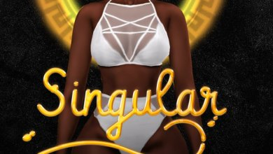 DJ Real ft. Yonda & Idowest & Wale Turner - Singular