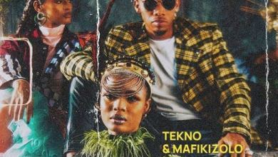 Mafikizolo on 'Enjoy' remix with Nigerian Singer, Tekno