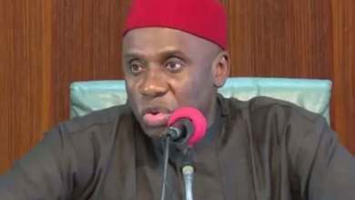 Why Amaechi opposed award of $1.5bn channel management contracts – Transportation ministry