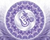 Chakra 7, het Kruinchakra, jouw verbinding met het hogere