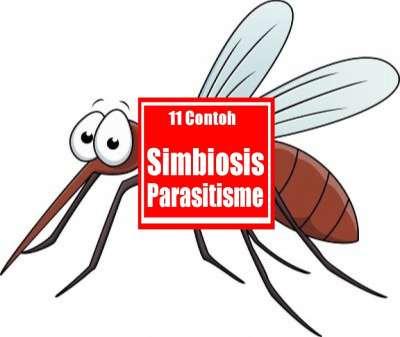 simbiosis parasitisme