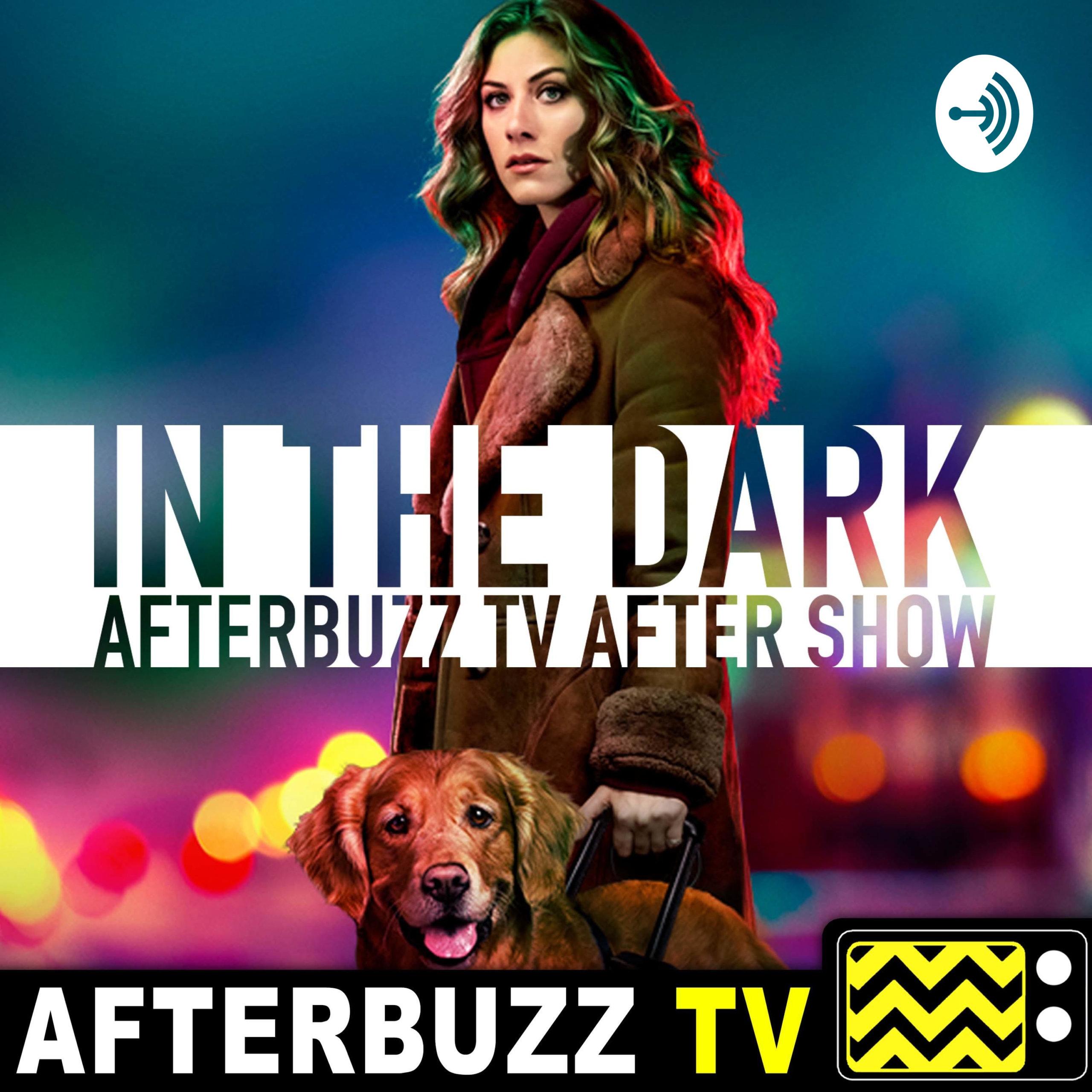 The In The Dark Podcast