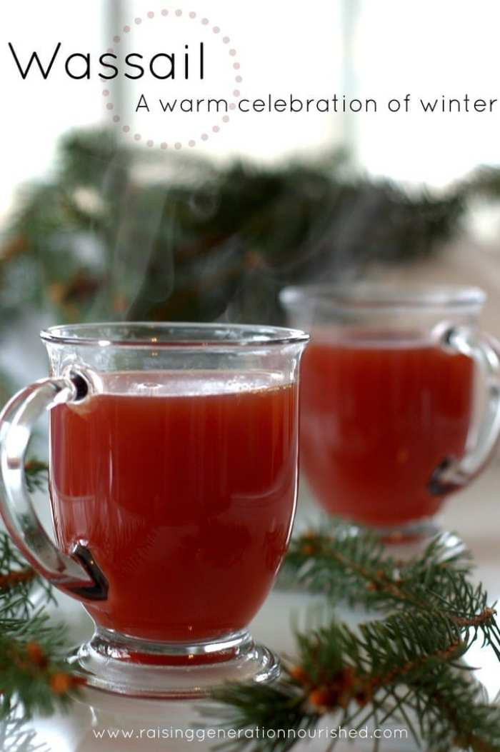 Winter Wassail-Holiday-Cocktails-Recipe