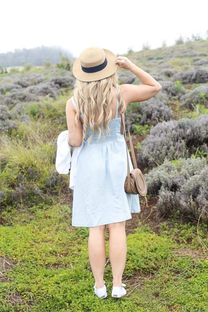 lavender-Maui-Vacation-Travel-Hawaii-Jord Watches-Chambray Dress-Old Navy-Chloe Bag-11