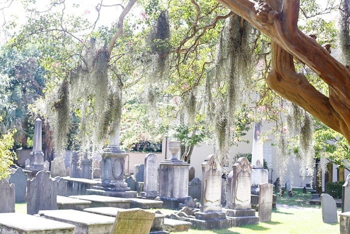 Blogger Ashley Pletcher toured Charleston, SC with Tour Charleston.