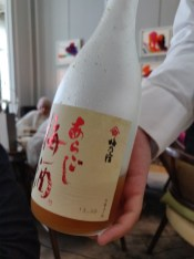Ume No Yado - Aragoshi Umeshu あらごし梅酒 Sake based plum wine with rich fruity flavour from its blended pulp. This plum wine promises you a refreshing taste and texture.