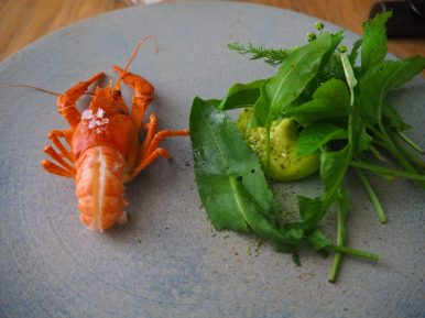 "Crayfish with ""bouquet garni"" and dill topped with wild berries vinegar"