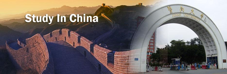 China government scholarship program